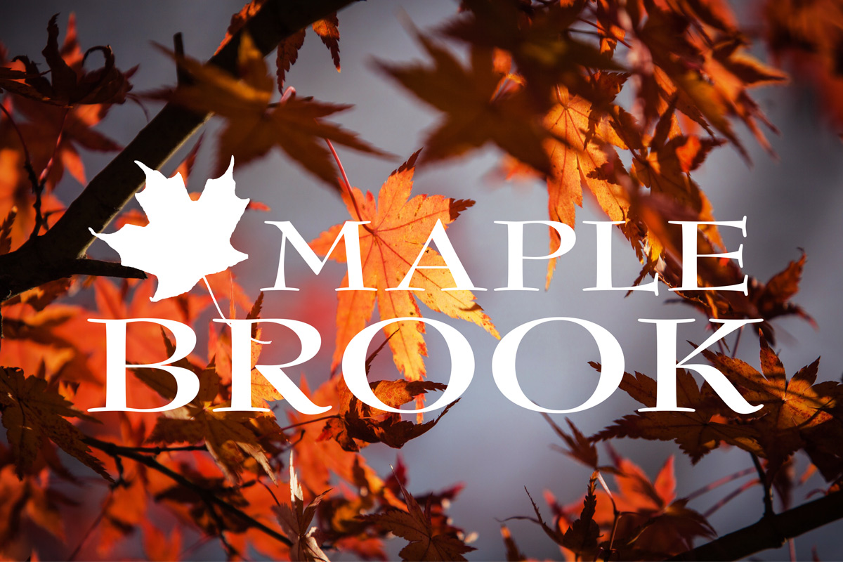 Maple Brook
