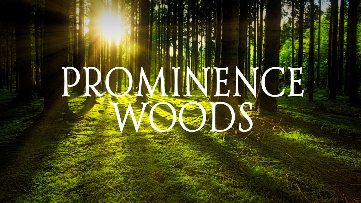 Prominence Woods